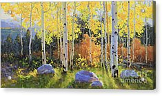 Glowing Aspen  Acrylic Print by Gary Kim