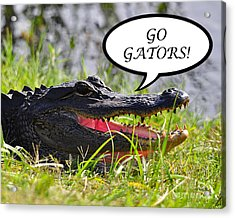 Go Gators Greeting Card Acrylic Print by Al Powell Photography USA