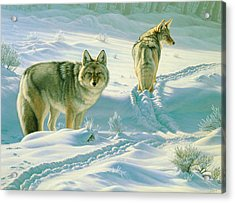 God's Dogs Acrylic Print by Paul Krapf