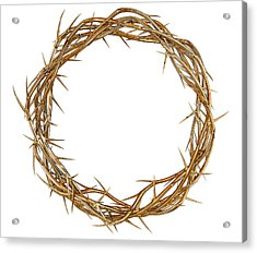 Golden Crown Of Thorns Acrylic Print by Allan Swart