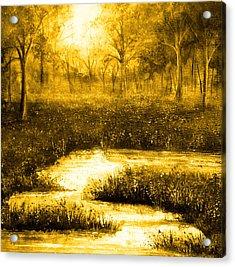 Golden Evening Acrylic Print by Ann Marie Bone