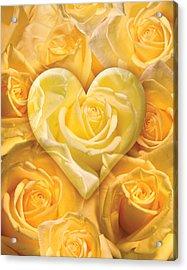 Golden Heart Of Roses Acrylic Print by Alixandra Mullins