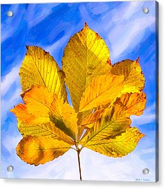 Golden Memories Of Fall Acrylic Print by Mark E Tisdale