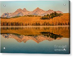 Golden Mountains  Reflection Acrylic Print by Robert Bales