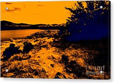 Golden Nights Acrylic Print by Mickey Harkins