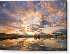 Golden Ponds Scenic Sunset Reflections 3 Acrylic Print by James BO  Insogna