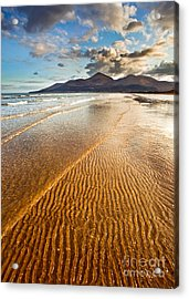 Golden Ripples Acrylic Print by Derek Smyth