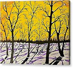 Golden Shadows Acrylic Print by Jeffrey Koss
