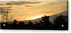 Golden Sky Acrylic Print by Ione Hedges