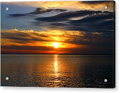 Golden Sun Acrylic Print by Faith Williams