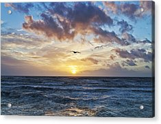 Gone With The Sun Acrylic Print by Nick Barkworth