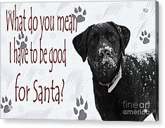Good For Santa Acrylic Print by Cathy  Beharriell