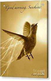 Good Morning Sunshine Acrylic Print by Carol Groenen