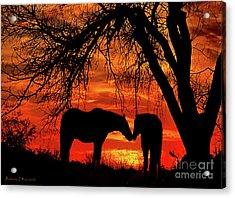 Goodnight Kiss Acrylic Print by Barbara D Richards