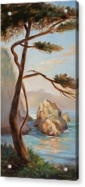 Graceful Pine In Afternoon Light At Point Lobos Acrylic Print by Karin  Leonard