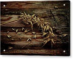 Grain Acrylic Print by Odd Jeppesen