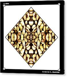 Grains Acrylic Print by Roberto Alamino
