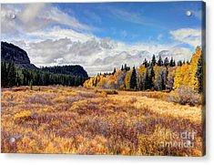 Grand Mesa Colors Acrylic Print by Bob Hislop