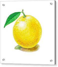 Grapefruit Acrylic Print by Irina Sztukowski