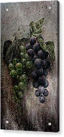 Off The Vine Acrylic Print by Aaron Berg
