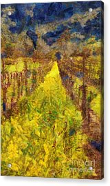 Grapevines And Mustard Acrylic Print by Alberta Brown Buller
