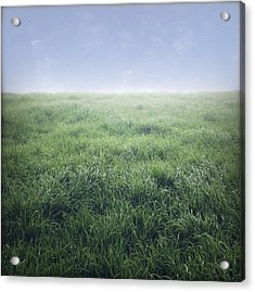 Grass And Sky  Acrylic Print by Les Cunliffe