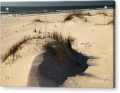 Grassy Dunes Acrylic Print by Adam Jewell