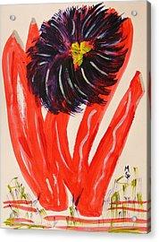 Gray And Vermillion Acrylic Print by Mary Carol Williams