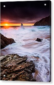 Gray Whale Cove Acrylic Print by Alexis Birkill