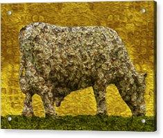 Grazing 2 Acrylic Print by Jack Zulli