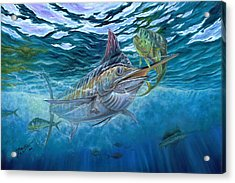 Great Blue And Mahi Mahi Underwater Acrylic Print by Terry Fox