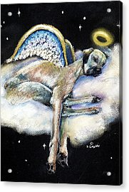 Great Dane Angel Leggy Acrylic Print by Darlene Grubbs