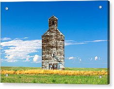 Great Plains Sentinel Acrylic Print by Todd Klassy