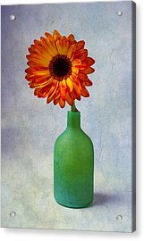 Green Bottle With Orange Daisy Acrylic Print by Garry Gay