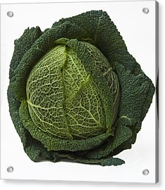 Green Cabbage Acrylic Print by Bernard Jaubert