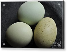 Green Eggs Acrylic Print by Cheryl Baxter