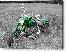 Green Fat Boy Acrylic Print by Guy Whiteley