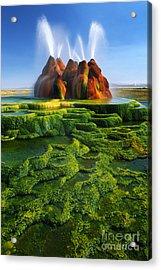 Green Fly Geyser Acrylic Print by Inge Johnsson