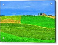 Green Green Grass Of Home Acrylic Print by Midori Chan