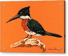 Green Kingfisher Acrylic Print by Juan  Bosco