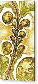 Green Plant Acrylic Print by Anastasiya Malakhova