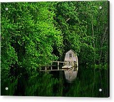 Green Reflections Acrylic Print by Kerri Ann Crau