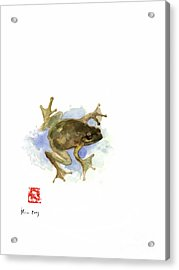 Green Yellow Blue Frog Lake River Animal World Water Colors Jewel Collection Acrylic Print by Johana Szmerdt