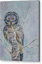 Great Gray Owl On A Snowy Day Acrylic Print by Ellen Levinson