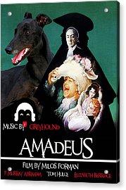 Greyhound Art Canvas Print - Amadeus Movie Poster Acrylic Print by Sandra Sij