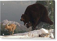 Grizzly Bear Chasing Rabbit Acrylic Print by Daniel Eskridge