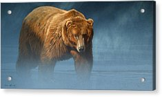 Grizzly Encounter Acrylic Print by Aaron Blaise