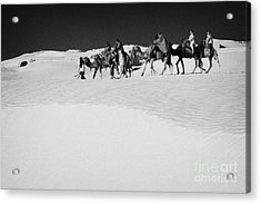 group of tourists in desert dress on camel back being taken through the sand dunes and ruins sahara desert at Douz Tunisia Acrylic Print by Joe Fox