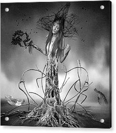 Growing Up Acrylic Print by Erik Brede