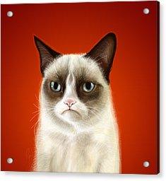 Grumpy Cat Acrylic Print by Olga Shvartsur
